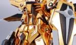 『METAL ROBOT魂  アカツキガンダム(オオワシ装備)』が予約開始!
